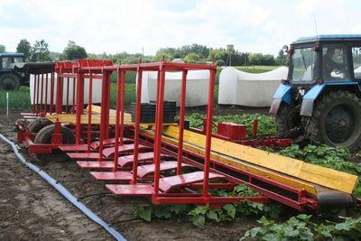 半自動きゅうり収穫機06