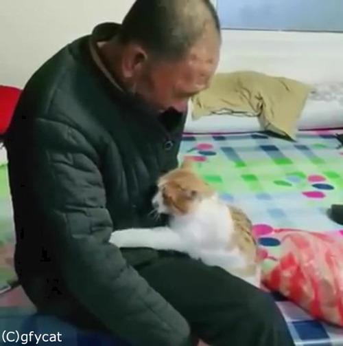猫とおじいちゃん、とっても仲良し04