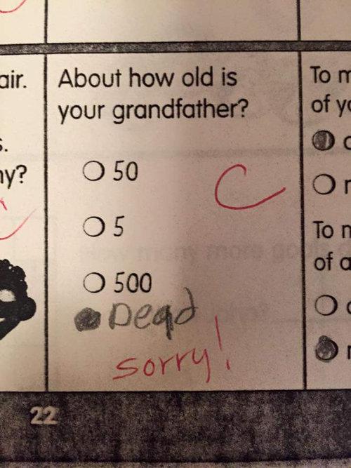20年前の自分のテストに書いていた答え01
