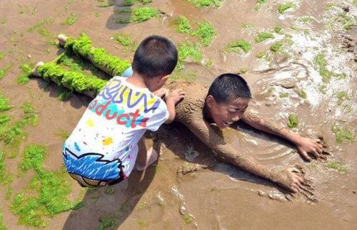 中国の緑の海07