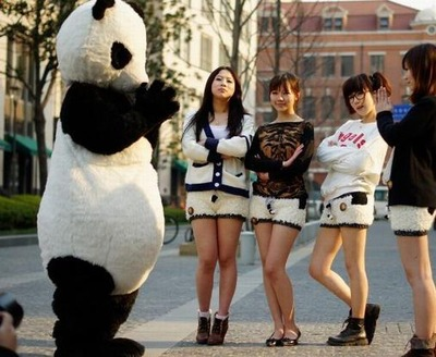 パンダのホットパンツ05