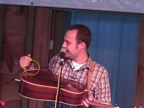 演奏中のギターに小鳥