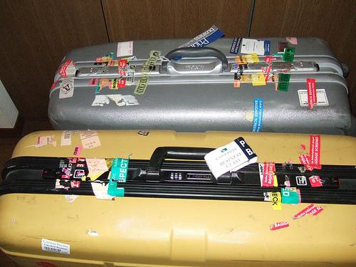 スーツケース猫00