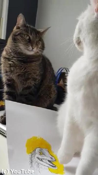飼い主の代わりに猫を叱ってくれる猫04