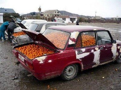 独創的過ぎる車08