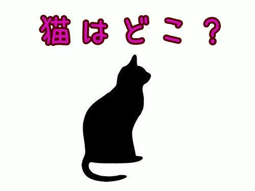 猫はどこ?00