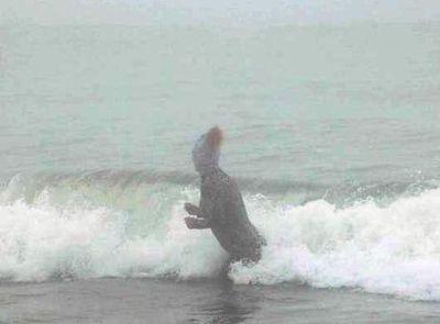 ビーチの視線を一身に浴びる斬新すぎる水着の女性03
