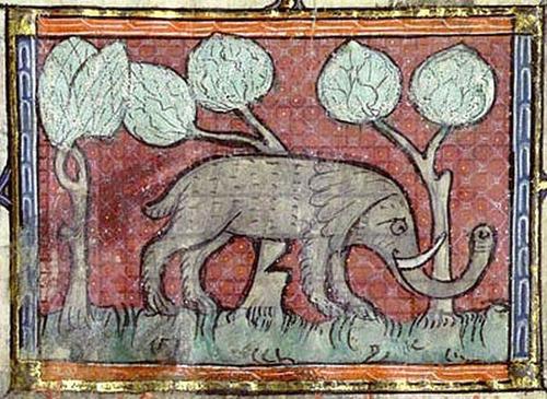 中世の想像で描かれたゾウ12
