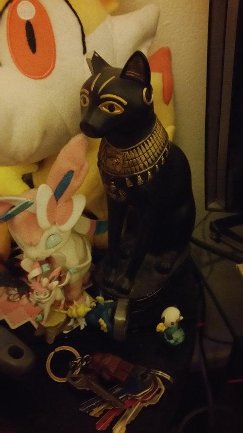 花瓶に猫が頭を突っ込むと03