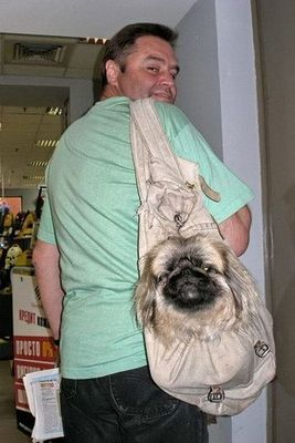 犬と離れられない人々07