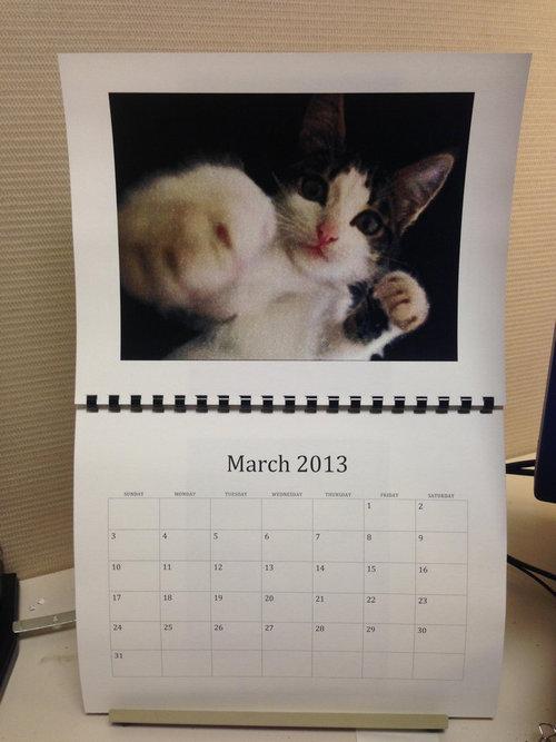 猫のカレンダー03