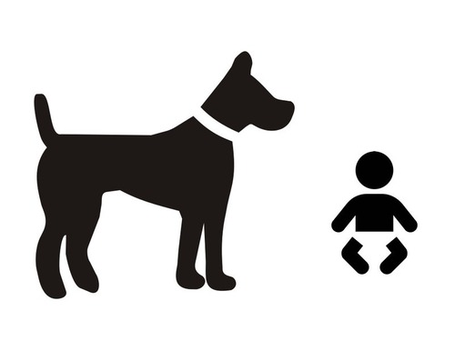 うちの新生児をうちの犬が守る00