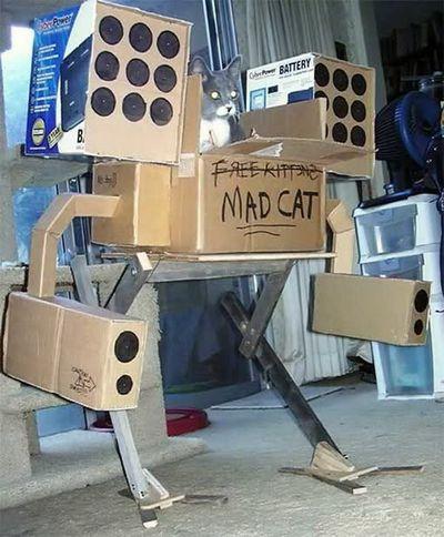 猫に戦車04