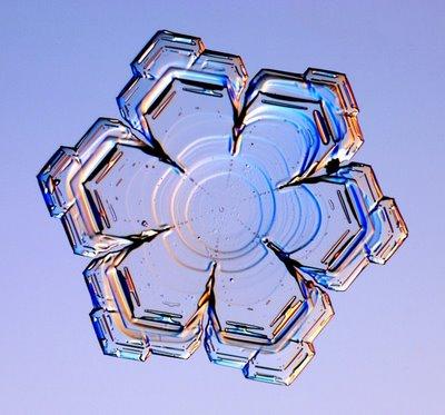 雪の結晶14