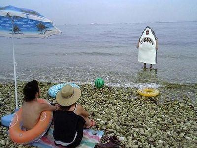 サメの着ぐるみ・コスプレ大集合TOP