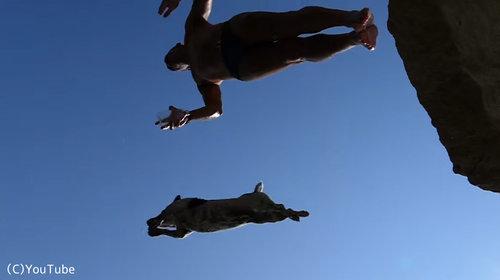 ダイビング犬07