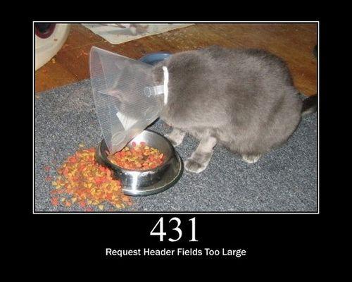 猫でHTTPステータスコード21