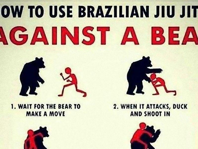 「ブラジリアン柔術で野生のクマと戦う方法」に対する海外の反応