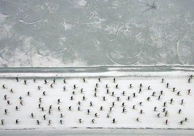 スキーで1万人以上が密集して雪崩のように滑る状況04