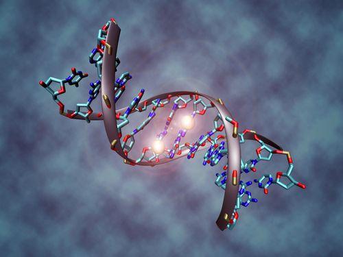 こんなに小さいとは…細胞にDNAを注入する「ナノインジェクター」の写真が話題に