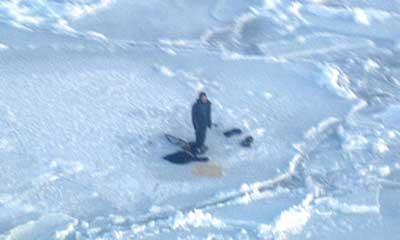 浮氷の上でサバイバル