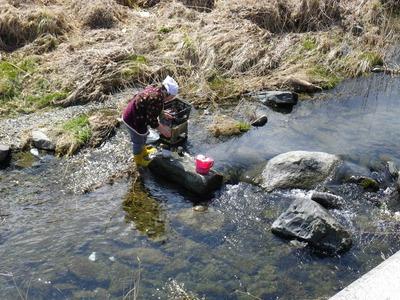川がきれいな地域では洗濯可能