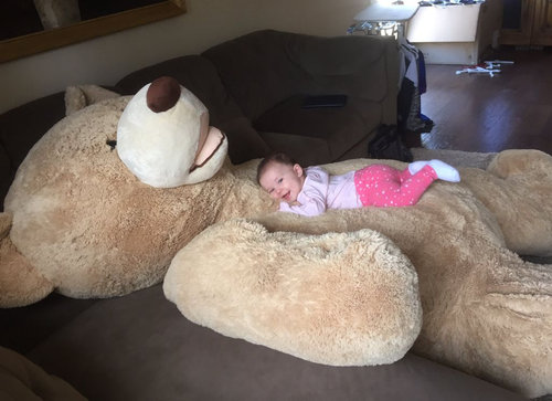 おじいちゃんが、孫娘のために巨大テディベアを買う07