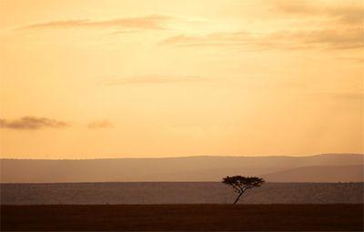 美しいアフリカ13