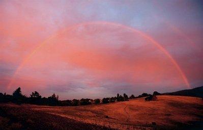 美しい虹01