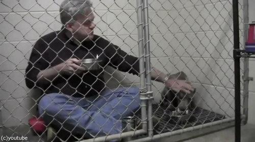 獣医がケージの中で犬と食事05