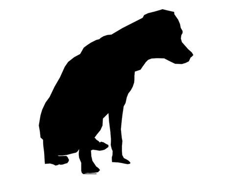 亡くなった飼い主のベッドの横に座る犬
