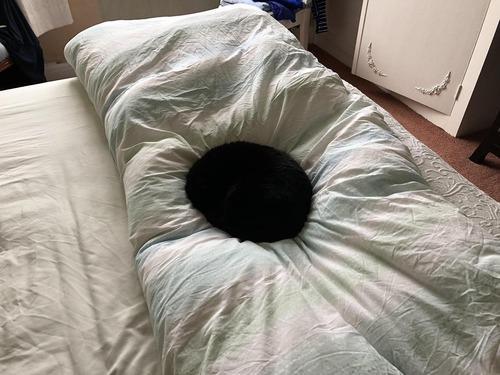 部屋にブラックホール01