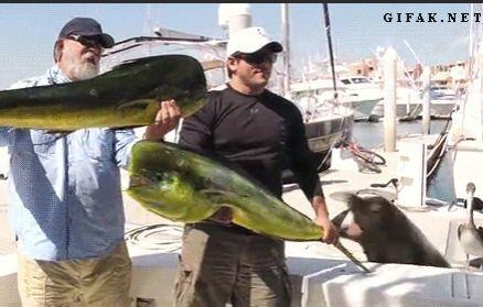 大物を釣ったときの記念撮影02