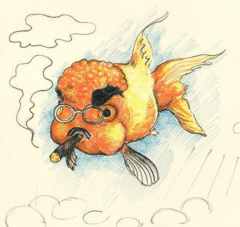 アングリー金魚06