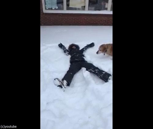 犬の目の前で雪に寝転がる01