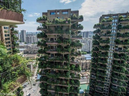 中国の「垂直の森」00