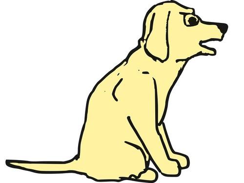 犬が突然しゃべれるようになったら