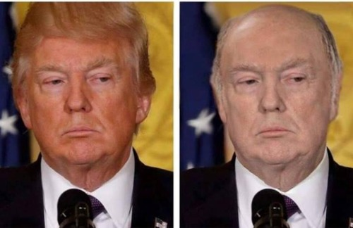 トランプ大統領が色白で頭が薄かったら01