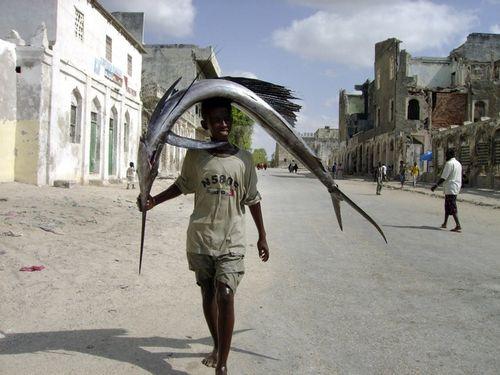 ソマリアの魚釣り18