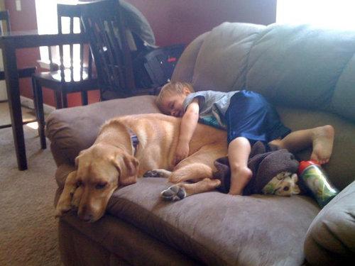 息子と愛犬の友情19