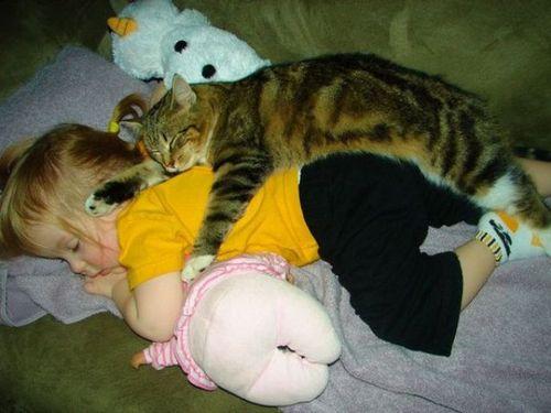 ペットと赤ちゃん12