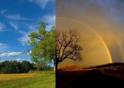 小道に現れた2重の虹ゲートTOP