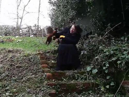 キジに襲われる女性02