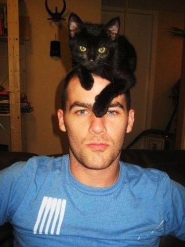 猫を頭乗せ01