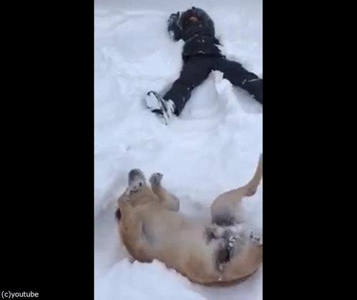 犬の目の前で雪に寝転がる05