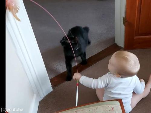猫を操る赤ちゃん02