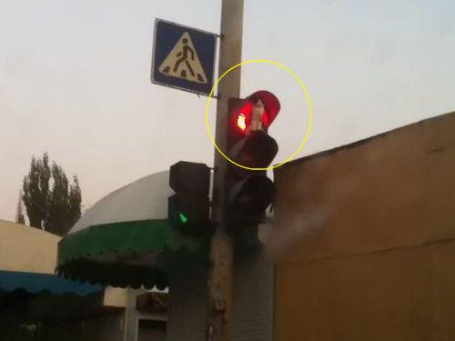 赤信号の猫