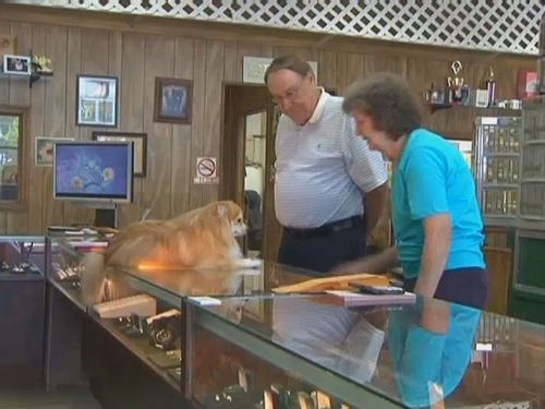 ダイヤモンドを食べる犬00