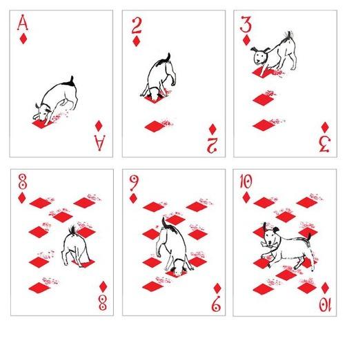 犬のトランプ02