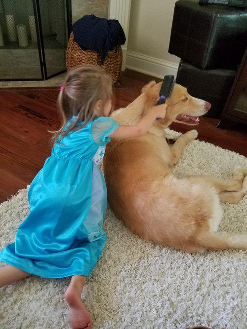 犬と娘の3年後05